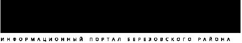 BEREZA NEWS logo